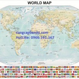 BẢN ĐỒ THẾ GIỚI (MẪU 11) – WORLD MAP (MẪU 11)