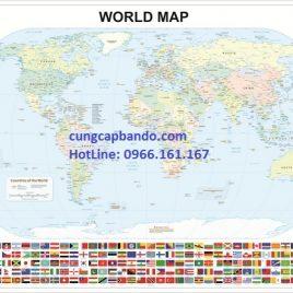 BẢN ĐỒ THẾ GIỚI (MẪU 14) – WORLD MAP (MẪU 14)