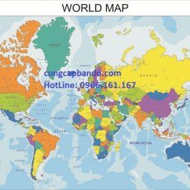 Bản đồ thế giới được thiết kế riêng cho công ty Secoin